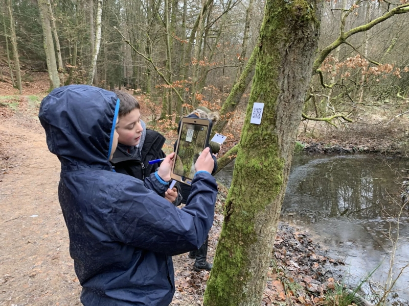 Wald trifft Schule